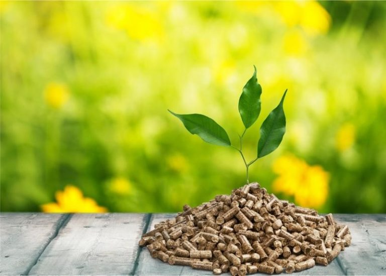 how to choose a superior biomass