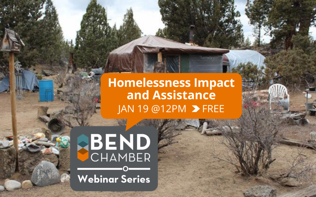 Webinar Series: Homelessness Impact and Assistance