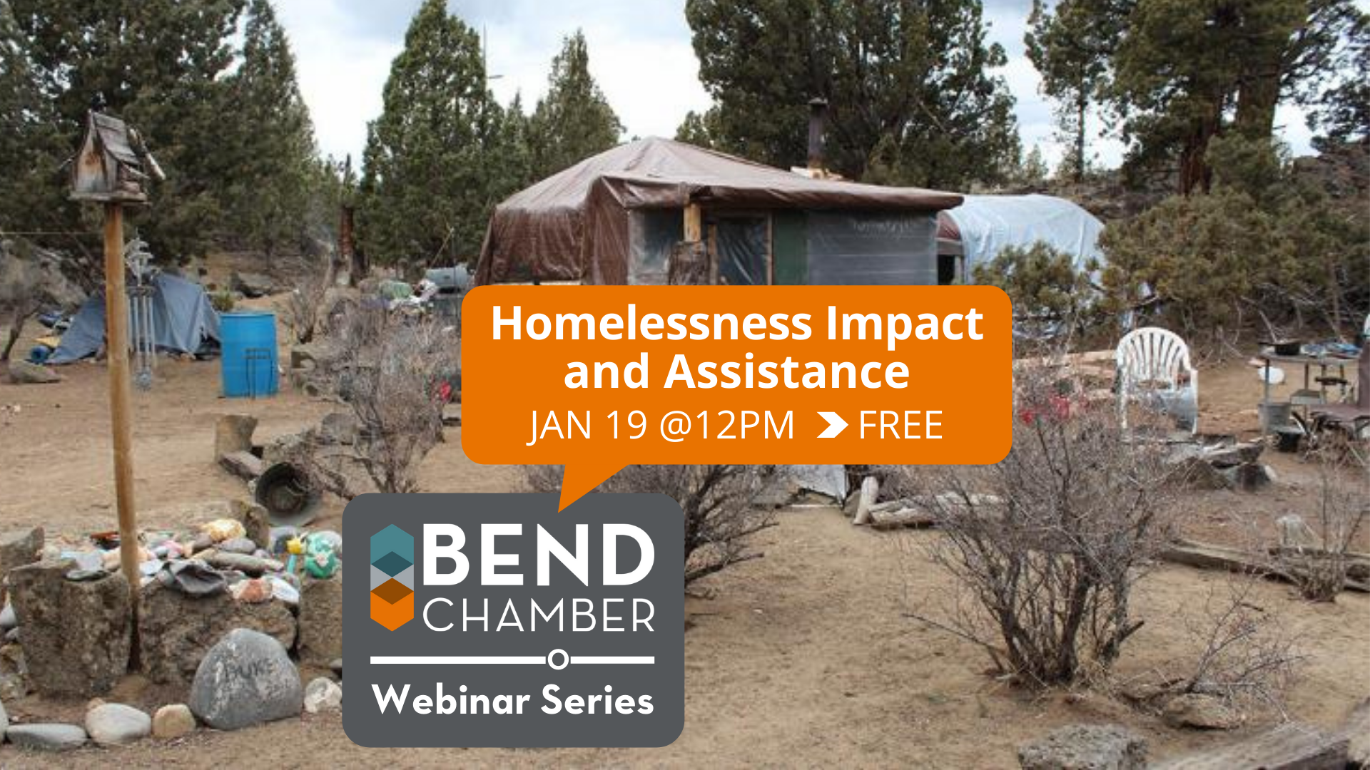 Homelessness Impact and Assistance